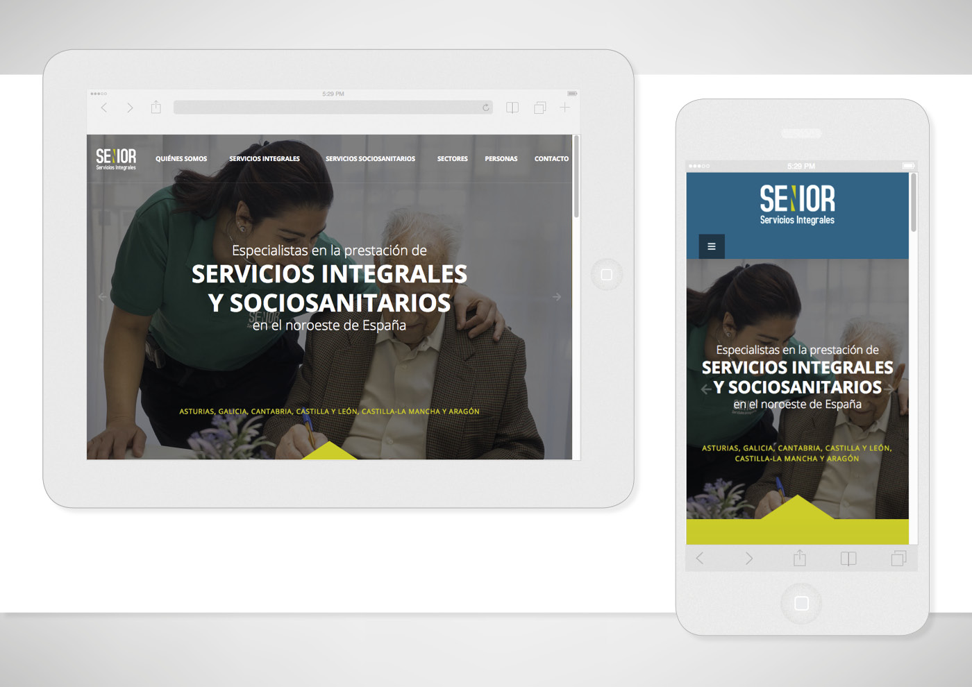 Senior Servicios Integrales - Web - Ivan Diez